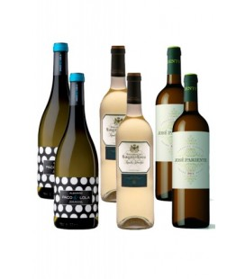 wine box 9 - vino blanco - comprar vino blanco - jose pariente - riscal
