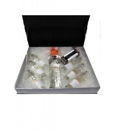 estuche june liqueur + botanicos + 6 tonicas 1724