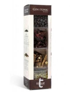 Pack 4 Botánicos Gin Tonic XXL