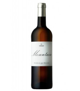 Mountain Blanco 2013