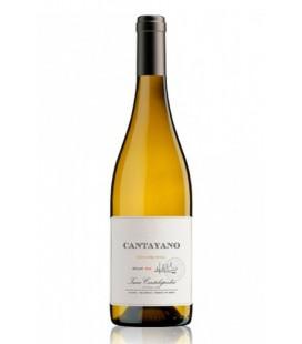 cantayano - comprar cantayano - comprar vino blanco cantayano - vino