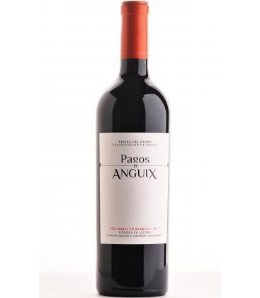 PAGO DE ANGUIX 10 MESES TINTO 75CL
