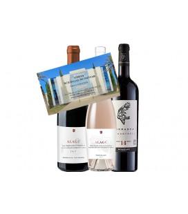 Pack MG Wines + Visita bodegas Monovar