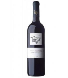 Quinta de Tarsus 2014